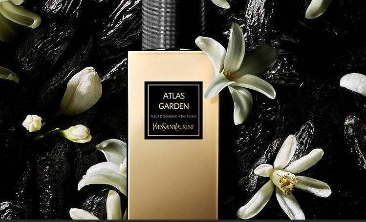 Новинки женских парфюмов, которые уже скупают все модницы
