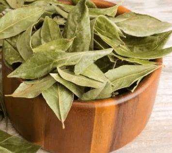 Лавровый лист, как средство омоложения кожи