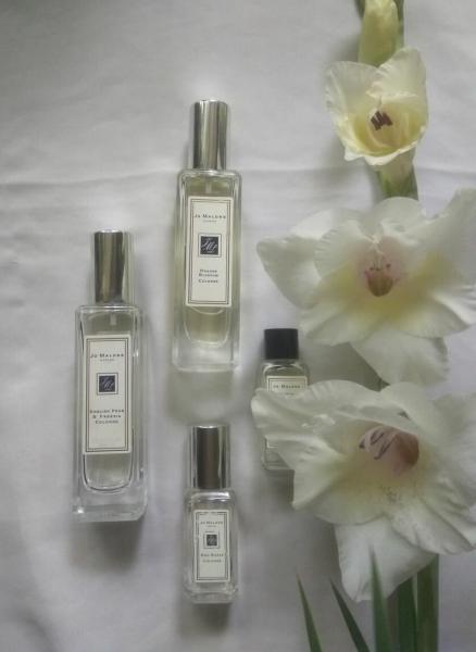 С каких марок начать знакомство с селективной парфюмерией?