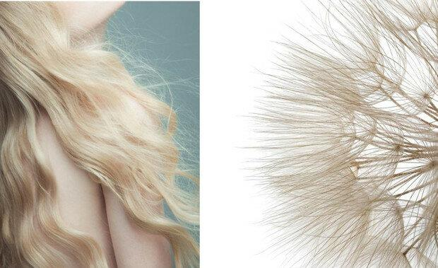 Красивые волосы: как избавиться от секущихся кончиков