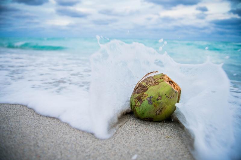 О пользе кокосового масла: ПРАВДА и МИФЫ 🥥
