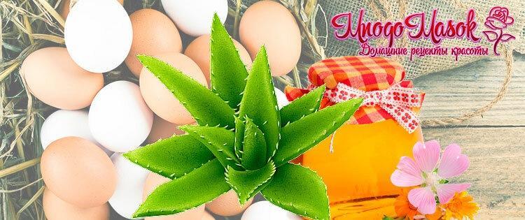 Лучшие маски для волос с яйцом для питания и роста