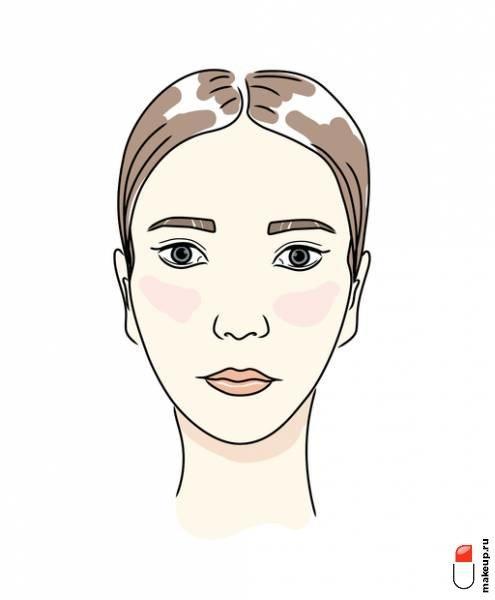 Красивые брови: как подобрать форму и изгиб?
