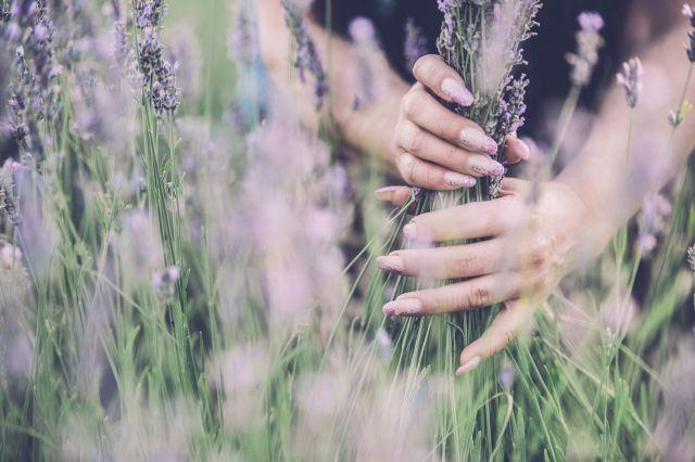 Мечты о Провансе: 19 идей лавандового маникюра